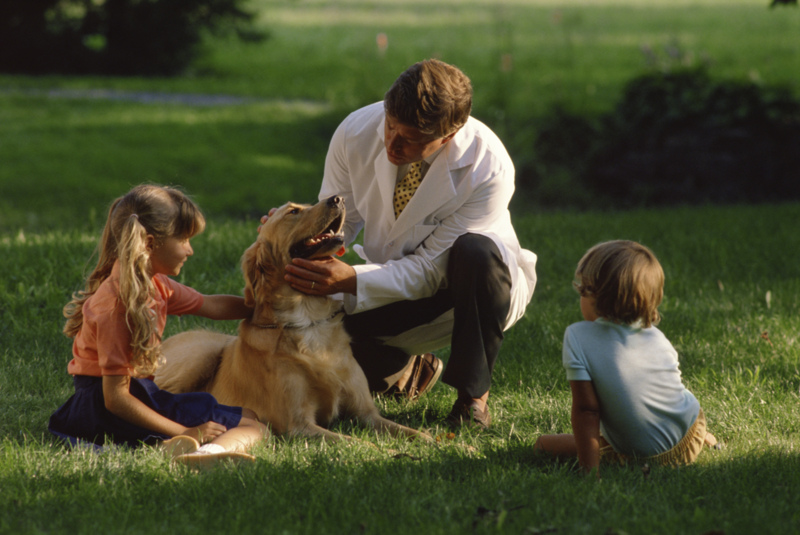 essay on kindness towards animals He must practice kindness towards animals philosophers are arguing that while our behavior towards animals is the moral status of animals.